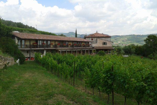 Vin & Vandring i Valpolicella