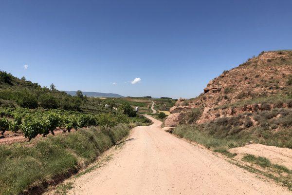 Hvad kan Camino vandring føre med sig…